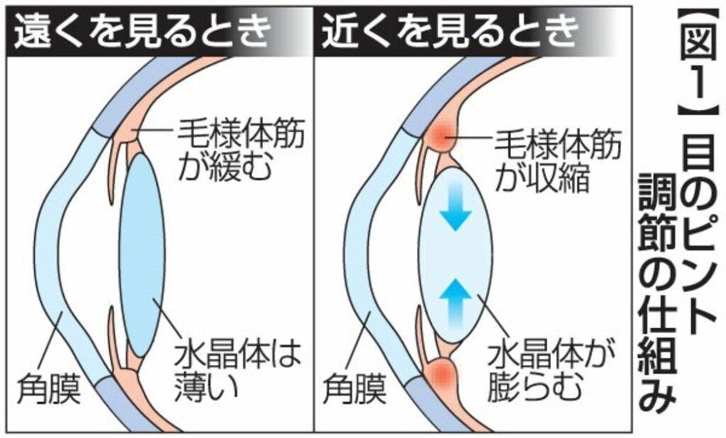 目の筋肉が常に緊張状態になっている